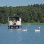 Bild des Pontonbootes auf dem Rheinsberger See
