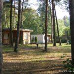 """Ferienhäuser in schattiger Lage bei der Bungalowvermietung """"Am Rheinsberger See"""""""