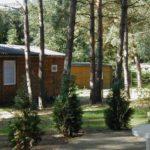 Ferienhaus im Wald in Rheinsberg - Warenthin