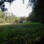 Zum Wandern wie geschaffen ist die wunderschöne Gegend von Rheinsberg - Warenthin.