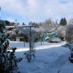 Winterliche Ruhe liegt über Rheinsberg - Warenthin